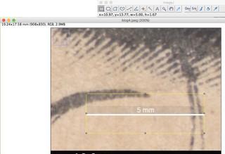 Blog6_5mm
